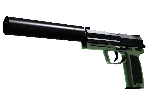 ::Items : USP-S | Para Green (Factory New)
