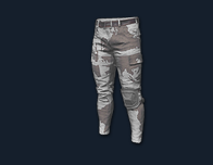 PlayerUnknown's Battlegrounds::Items : Combat Pants (camo)
