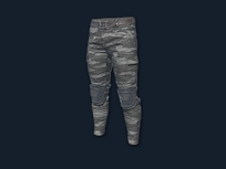 PlayerUnknown's Battlegrounds::Items : Combat Pants (Grey Camo)
