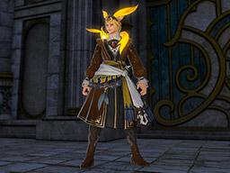 Final Fantasy XIV::Items : Topaz Carbuncle Attire