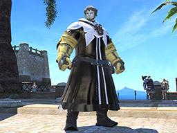 Final Fantasy XIV::Items : Papalymo's Attire