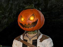 Final Fantasy XIV::Items : Ripened Pumpkin Head