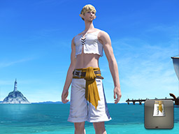 Final Fantasy XIV::Items : Southern Seas Trunks