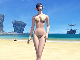 Final Fantasy XIV::Items : Women's Solar Summer Set
