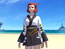 Final Fantasy XIV::Items : Black Lady's Yukata