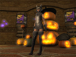 Final Fantasy XIV::Items : Female Werewolf Set