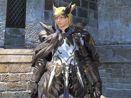 Final Fantasy XIV::Items : Ten Pots of Dark Brown Dye