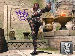 Final Fantasy XIV::Items : Emote: Crimson Lotus
