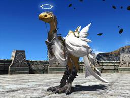 Final Fantasy XIV::Items : Angelic Barding